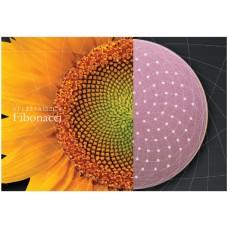 Абразивный  круг D=125mm SIA Abrasives 0973.4197